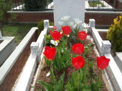Mezar Bakım Düzenleme